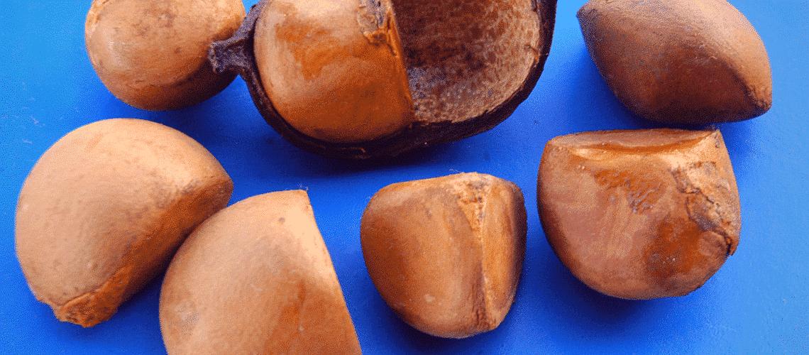 Właściwości olejku andiroba