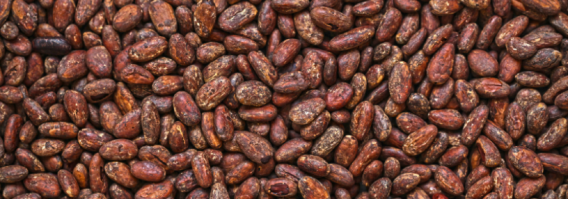 bosphaera masło kakaowe